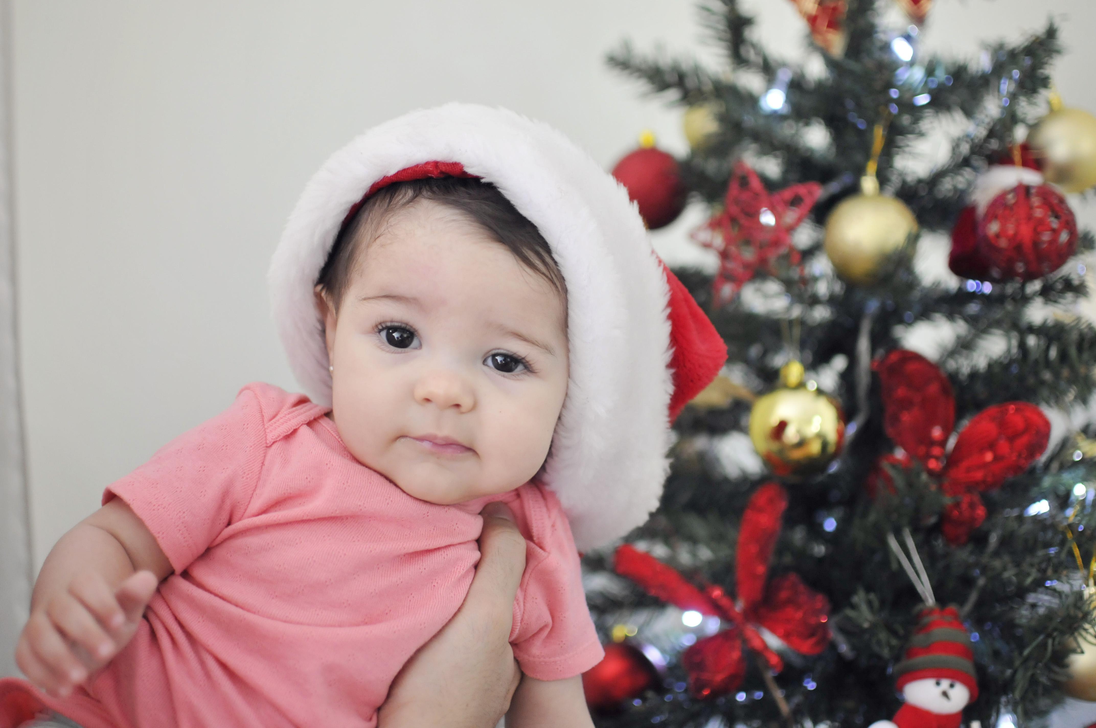 A árvore do nosso (primeiro) Natal